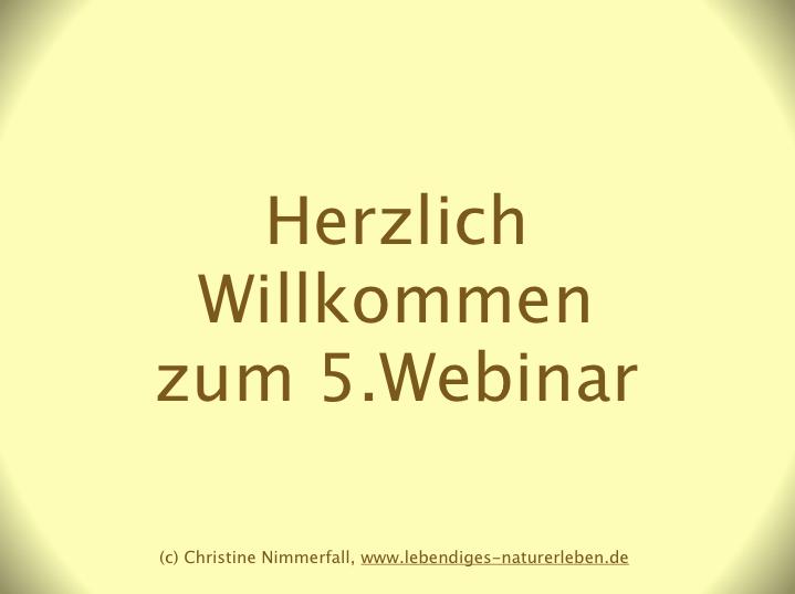 """Webinar-Reihe """"Gärtnerische Grundlagen"""" - Teil 5: Terra Preta und Kübelgärtnerei"""