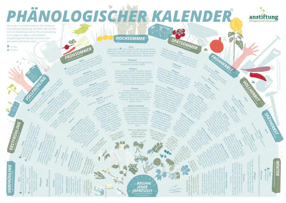Phänologischer Kalender - anstiftung & ertomis